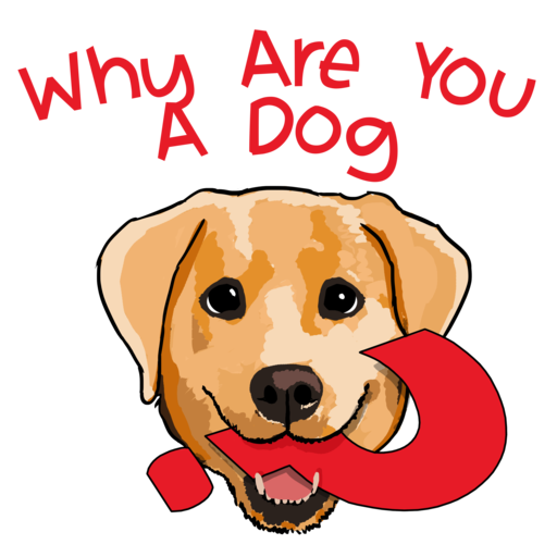 62 – Why Are You An Afghan Hound? Why Are You A Dog? podcast