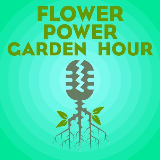 Flower Power Garden Hour 34 Tomato Expert Brad Gates Flower Power
