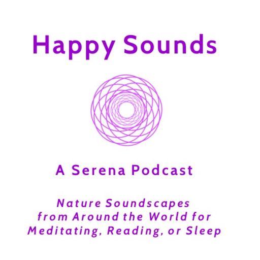 Bondi Beach Long Before Dawn Happy Sounds - A Serena Nature