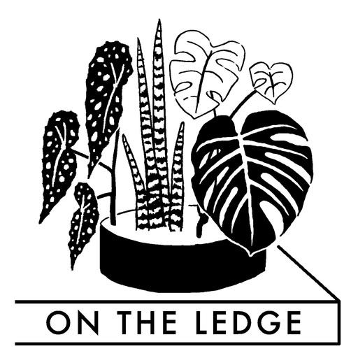 Episode 78 Houseplant Hoarding On The Ledge Podcast