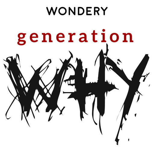 Dr Richard Iles - 338 The Generation Why podcast