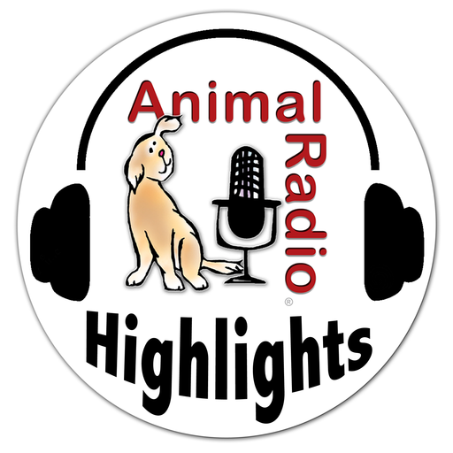 Robotic Dogs For Alzheimer's Patients Animal Radio