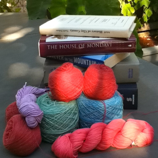 Episode 180: She Picoulted All Over It 2 Knit Lit Chicks podcast