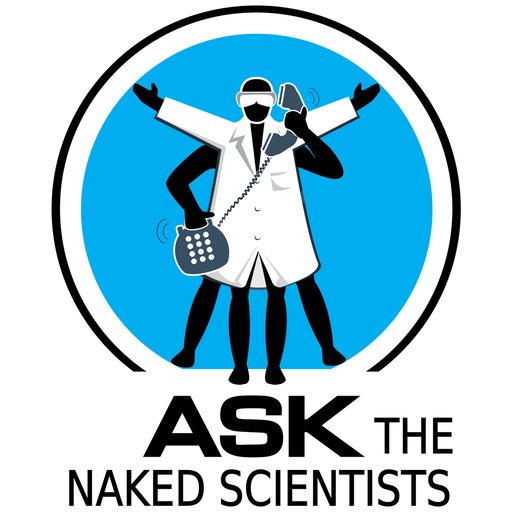 Do Wild Animals Snore? Ask The Naked Scientists podcast